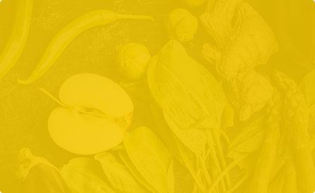 Cms-Banner2.jpg